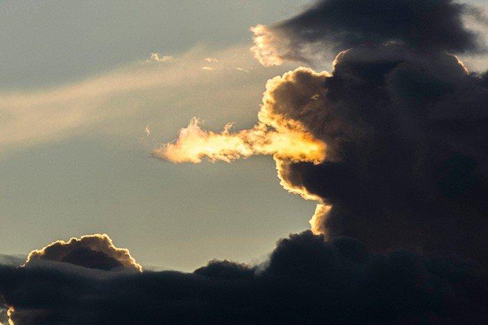 Photo Credit: http://www.ohmymag.com/buzz/21-photos-qu-039-il-faut-regarder-longtemps-pour-bien-comprendre_art88976.html